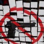 Carta dirigida a los diputados y diputadas en relación al debate sobre las reformas de la Ley de Armas y Explosivos.